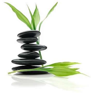 Bienestar y equilibrio